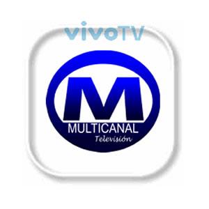 Multicanal Televisión