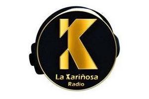 La Kariñosa Salsa - Madrid