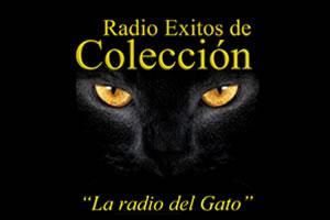 La Radio Del Gato - Bogotá