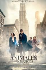 ANIMALES FANTÁSTICOS Y DÓNDE ENCONTRARLOS - FANTASTIC BEASTS AND WHERE TO FIND THEM