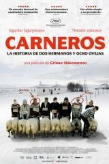 CARNEROS - HRÚTAR (RAMS)