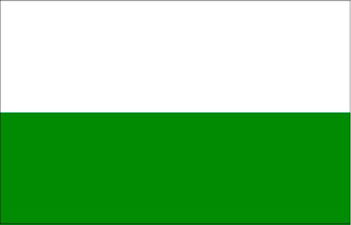 bandera antioquia