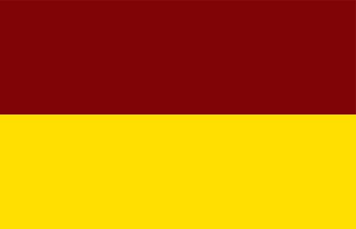 bandera Tolima