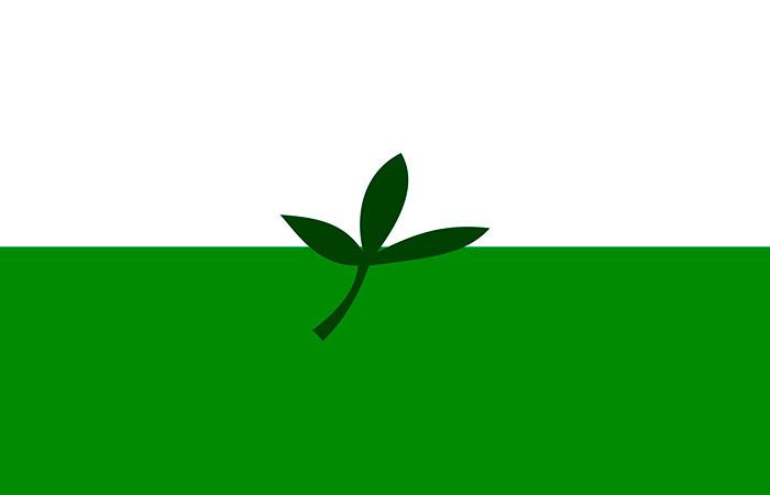 bandera Vaupés