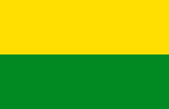 bandera vichada