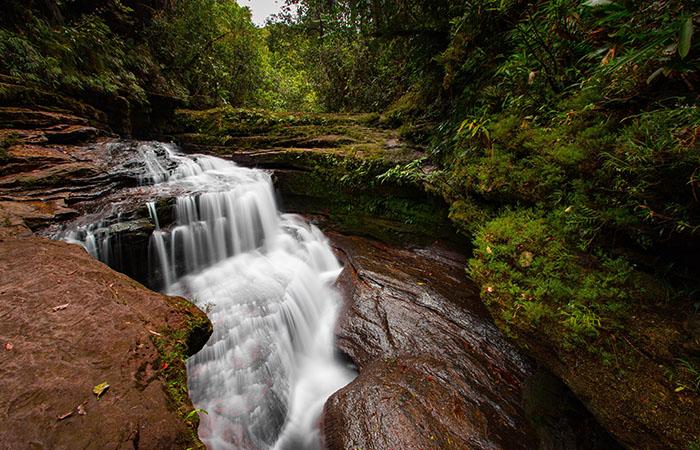 Amazonas sitios tur ticos for Paginas web sobre turismo