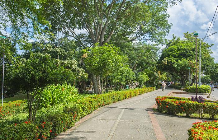 Parque Simon Bolivar De Monteria