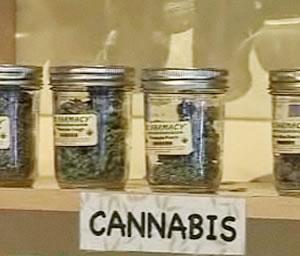 Marihuana expedida bajo prescripción