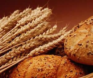 Beneficios de tener una dieta rica en fibras