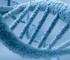¿Es posible teletransportar el ADN?