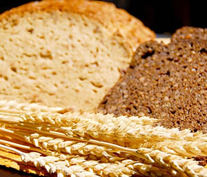 A comer fibra para vivir más