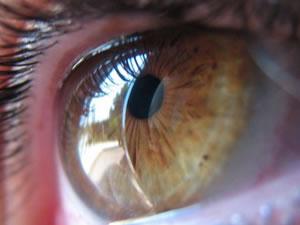 La importancia de ejercitar los ojos