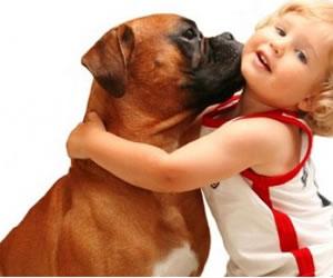 Gente con mascotas goza de mejor salud