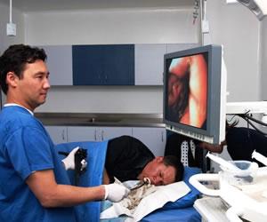 El ABC de la endoscopia, para prevenir el cáncer gástrico