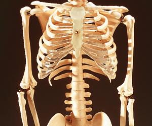 Crean material similar a la de los huesos con una impresora 3D