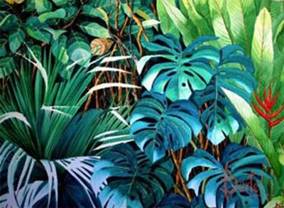 Selva en Detalle