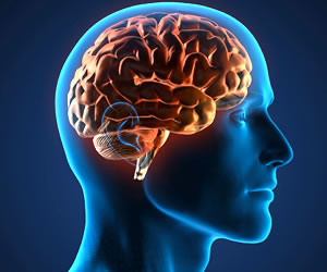 ¿El exceso de grasa encoge el cerebro?