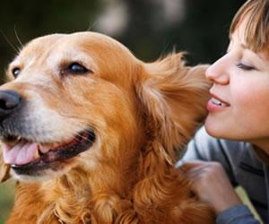 Tener una mascota es bueno para tu corazón. ¿Por qué?