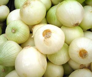 Las propiedades y beneficios de la Cebolla