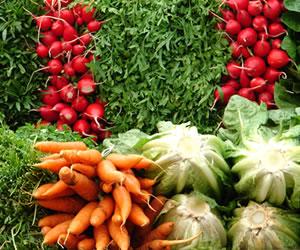 Uno de cada 50 niños es alérgico a los vegetales