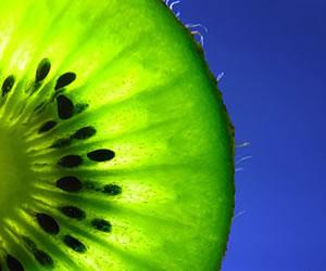 Para el verano, conoce las 8 frutas más hidratantes