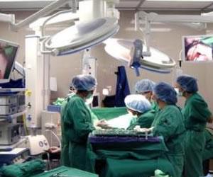Día mundial del donante de órganos y tejidos