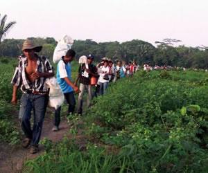 Se entregan primeras tierras restituidas por ley de víctimas