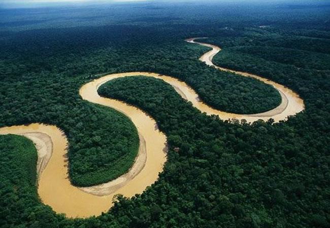 La Amazonía pierde varios kilómetros de selva