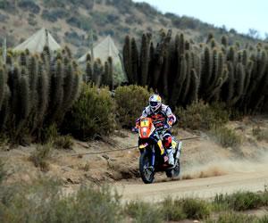 El piloto francés Ciryl Despres en acción hoy, sábado 19 de enero de 2013, durante la última etapa del rally Dakar, que se corre entre La Serena (Chile) y Santiago (Chile). EFE