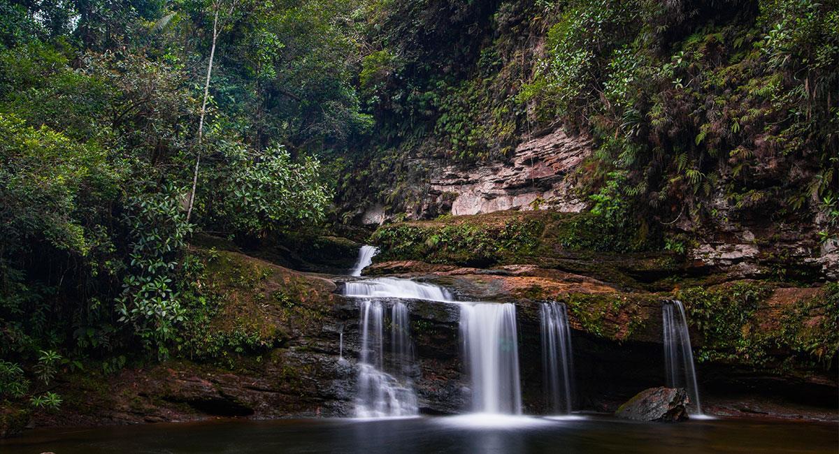 Río en el Amazonas. Foto: Shutterstock