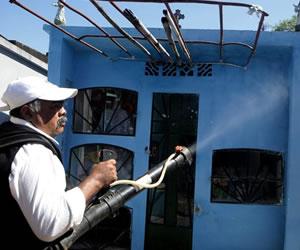 Autoridades sanitarias reportan segunda muerte por dengue en Panamá este 2014