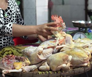 China confirma 5 enfermos más por H7N9, uno de ellos en Pekín