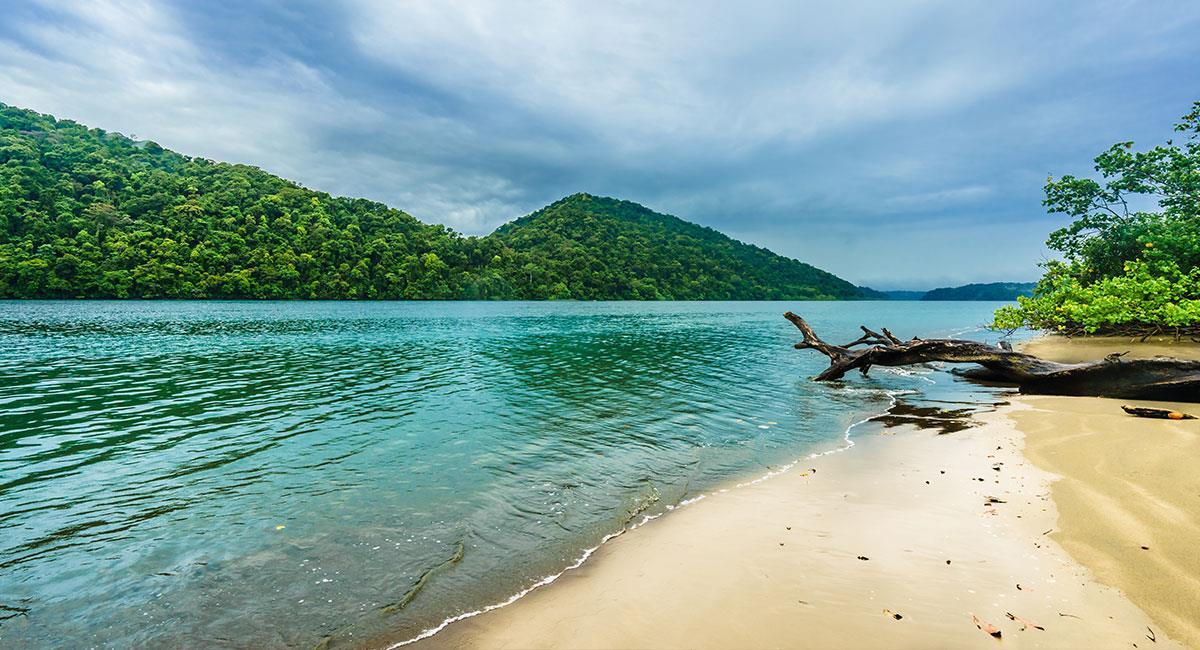 Cerca al parque se pueden visitar las playas de Nuquí. Foto: Shutterstock
