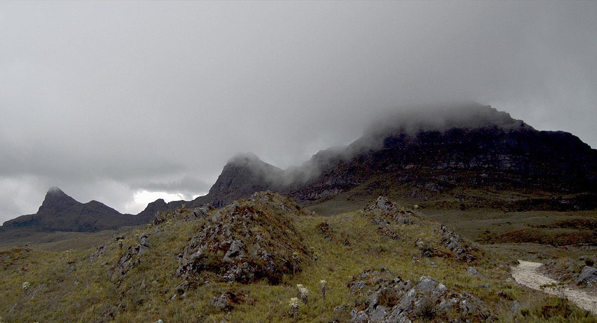 Pisba es un ecosistema montañoso de niebla y páramo. Foto: Fer Del Pino - Flickr