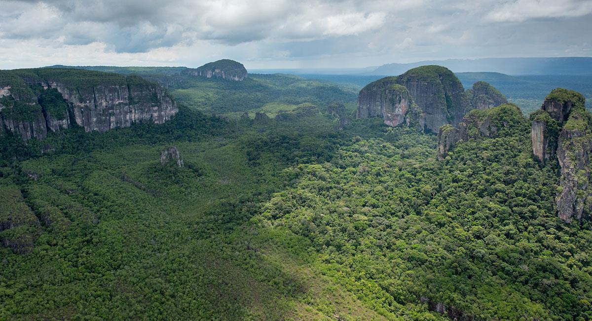 Parque Nacional Natural Serranía, patrimonio cultural colombiano. Foto: Charles Besancon - Flickr