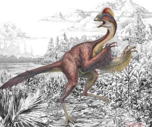 Descubren restos de dinosaurio que vivió hace 66 millones de años