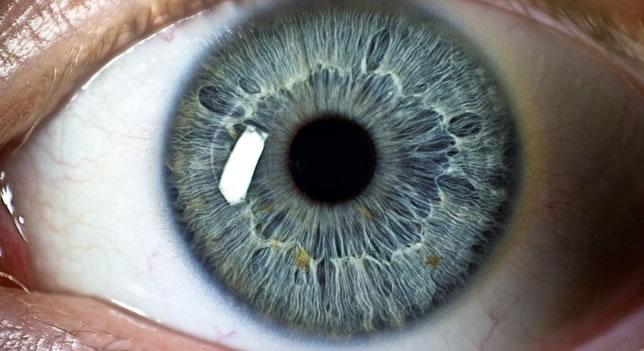 Ejercitación ocular para una vista sana y duradera