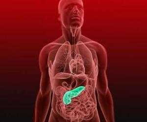 Molécula relacionada con el agresivo cáncer de páncreas permite potenciales avances clínicos