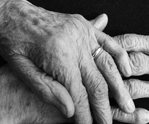 Especialista español revela que arterias son la clave contra envejecimiento