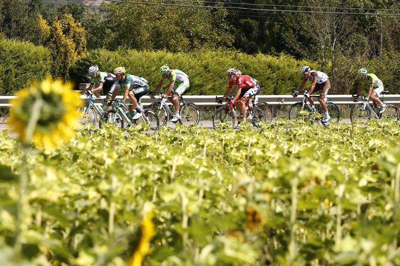 El El pelotón durante la decimotercera etapa de la Vuelta Ciclista. EFE