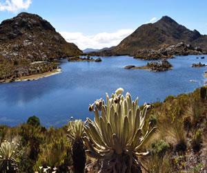 Anuncian que 98.954 hectáreas serán área protegida del Páramo de Santurbán