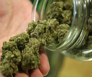 La marihuana puede ayudar a frenar el desarrollo del cáncer