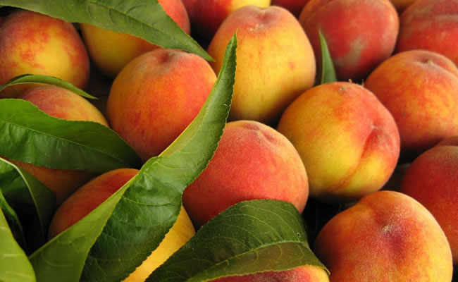 Diez alimentos afrodisíacos fáciles de conseguir