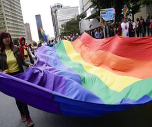Procurador pide anular fallo que permite a parejas gay adoptar