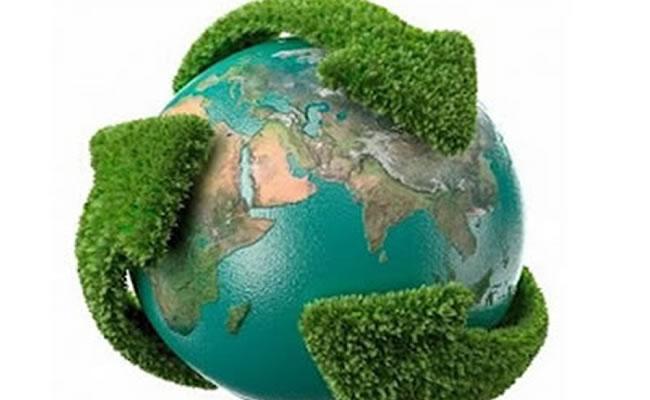 Seis consejos para ayudar al Medio Ambiente desde casa