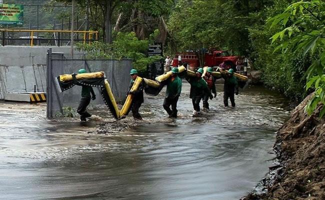Ambientalistas condenan atentados de FARC. Foto: EFE