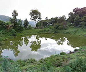 Parque Natural El Santuario