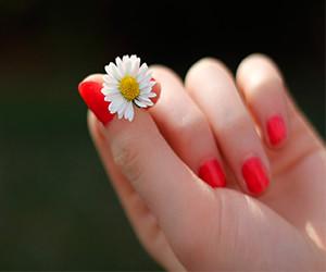 Seis tips para que tus uñas crezcan más rápido