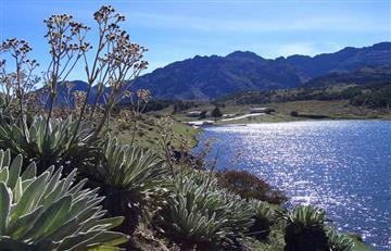 Día de la Tierra 2016: ¿Qué está pasando con el medio ambiente en Colombia?