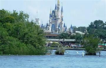 Disney: Cercan el lago donde un caimán arrastró a un niño
